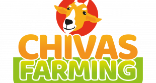 ChivaToken